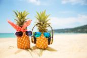 Wat als je baan een vakantie was?